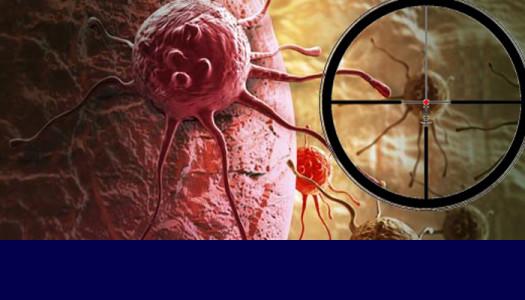 Lek na raka piersi? Już po pierwszej fazie testów klinicznych!