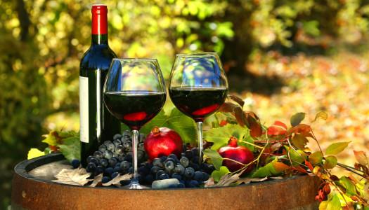 Prawdziwa historia czerwonego wina